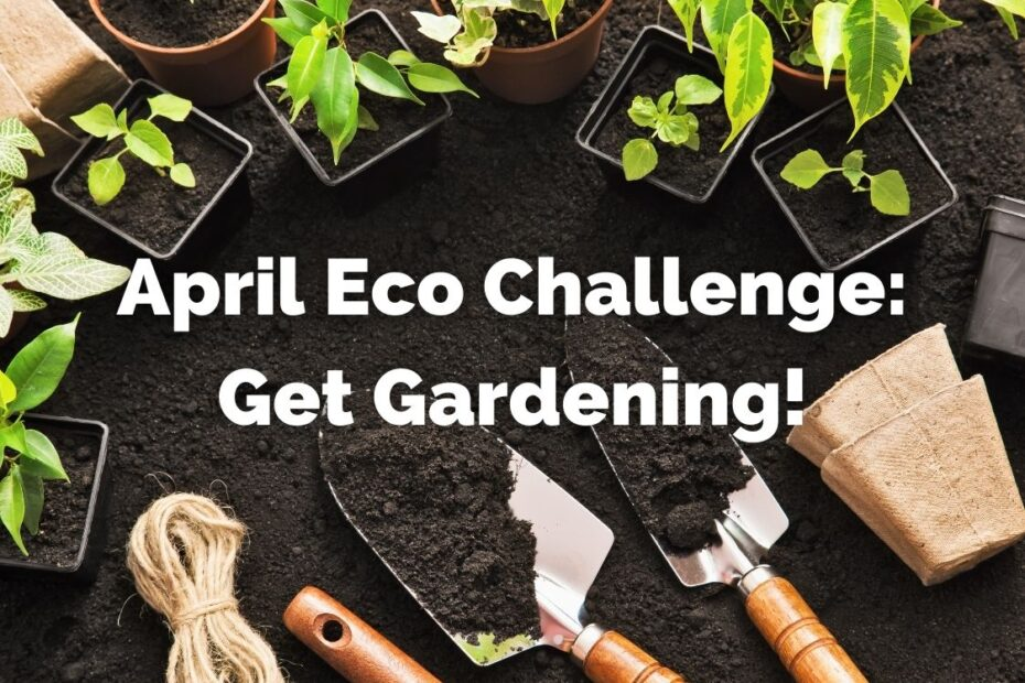 Garden this April to help the environment