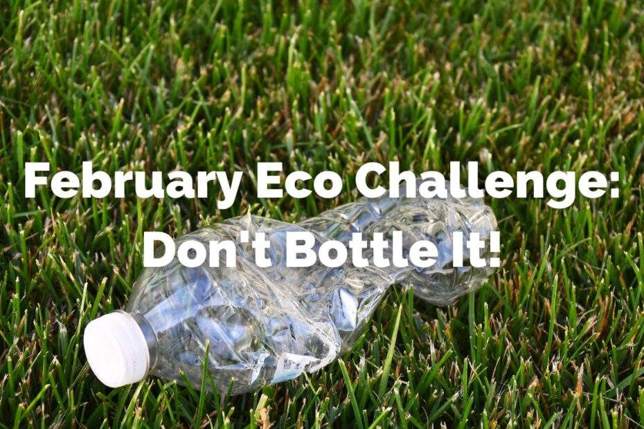 Don't use single use plastic water bottles this February