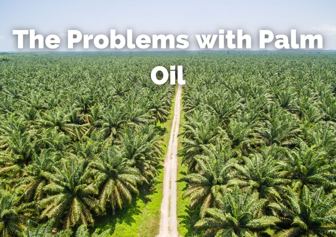 The Problems with Palm Oil