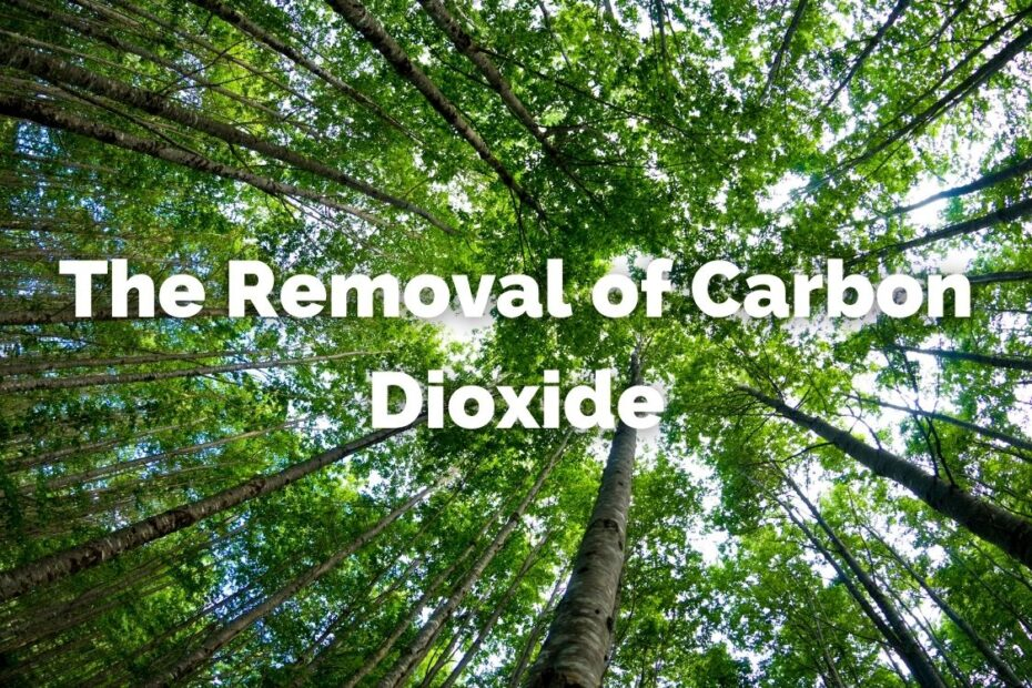 The removal of carbon dioxide