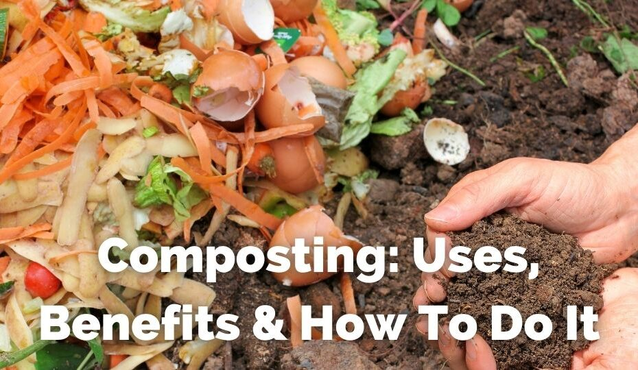 composting uses benefits and how to do it